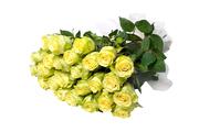 продам цветы оптом