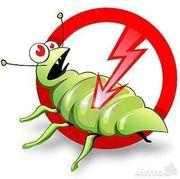 Устали жить с тараканами и клопами?