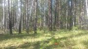 земельный участок в ДНТ Хрустальный на 32 км. Байкальского тр