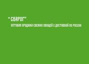 Оптовая продажа овощей с постоянной доставкой по всей России до 101 то
