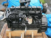 Двигатель для экскаватора Hyundai R320,  R330,  R300,  R350 - Cummins 6C8